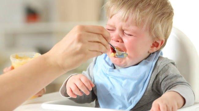 Trẻ bị dị ứng với cua sẽ không ăn được thực phẩm này