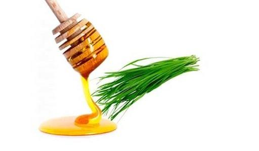 Không cho trẻ em dưới 1 tuổi sử dụng lá hẹ kết hợp mật ong
