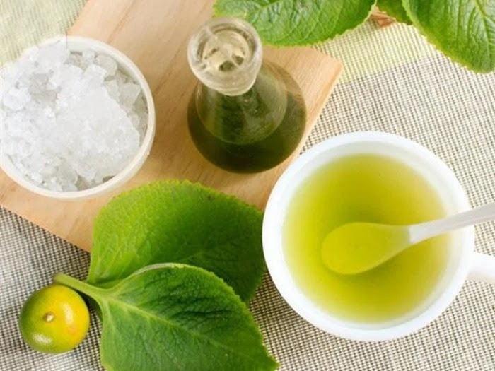 Bài thuốc chữa ho từ húng chanh kết hợp với quất và đường phèn