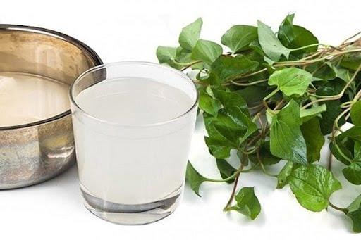 Rau diếp cá kết hợp nước vo gạo - Bài thuốc trị ho hiệu quả mẹ nên biết