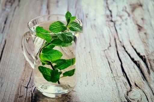 Nên pha loãng nước cốt lá bạc hà giúp trẻ dễ uống hơn