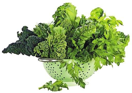 Các loại rau lá xanh tốt cho sức khỏe